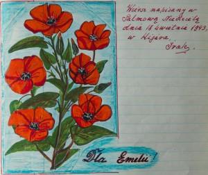 Foto zrobione z pamiętnika Jana Domańskiego - Krysia Janiga